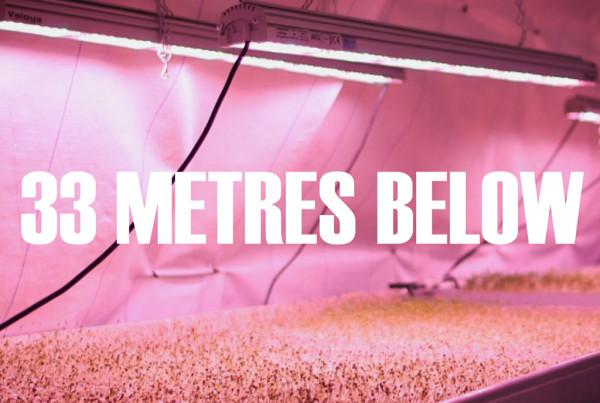 Farming underground in inner-city London.